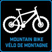 Cyclean Icon MTN Bike